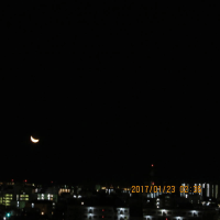 オレンジ色のお月様が写せない~ 2017.1.23 早朝