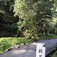 11月1日萩、秋吉台から倉敷へ