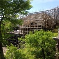 新緑と清水寺