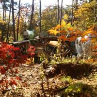 2014年11月 秋の景色