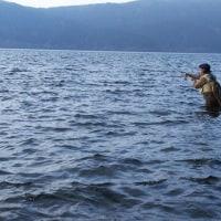 続・芦ノ湖のコーホー