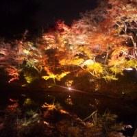 京都・高台寺