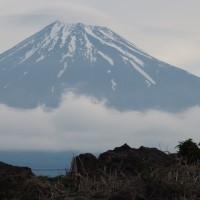数日ぶりの富士