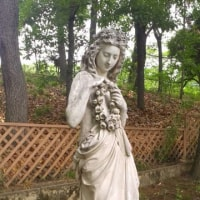 京都の美女 鶴見緑地公園