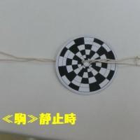 びゅんびゅん廻し駒作り‥(^^)v