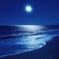 Moon神秘な世界