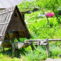 五月の北安曇野・・・奥信濃のミステリアス街道・・・善鬼の伝説・・・青鬼(あおに)村