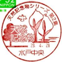ぶらり旅・水戸中央郵便局(天然記念物シリーズ第2集)