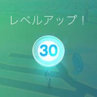 ポケモン レベル30!!