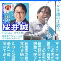 04【都知事選2016】朝鮮総連 前・東京地裁前【桜井 誠】