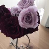 サロンオープンお祝いのお花♪