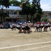 小学校運動会