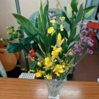 11月2回目の花