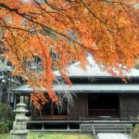 「東慶寺「は紅葉の見ごろ