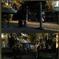 稲前神社、境内清掃の巻