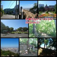北海道といえば●●球場?札幌円山