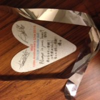 WaT 10th Anniversary Live 2015 昼の部