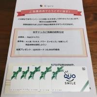 QUOカード  10,000円分  【当選】