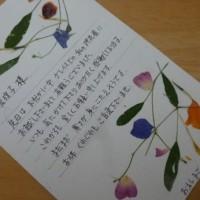 押し花の葉書