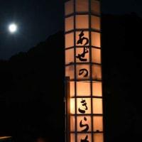 千枚田が夢の灯りで きらめき浮かぶ 「あぜのきらめき」