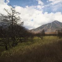 冬と春の隙間