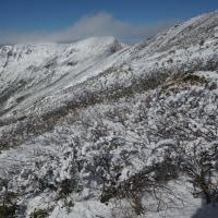 雪の谷川岳はいいな~ 下ります編