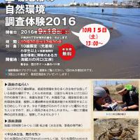 「工業地区の自然環境調査体験2016 海蔵川の河口編」時刻変更のお知らせ