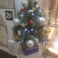 横浜高島屋のクリスマスツリー