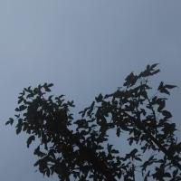 仙台の空6月25日、日曜日
