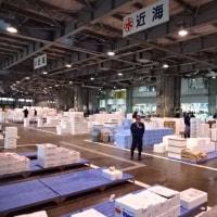 北海道は「毛ガニ」!オホーツクの「毛ガニ」!!「毛ガニ」のご注文・全国発送承ります☆彡発寒かねしげ鮮魚店の魚屋シゲちゃん。
