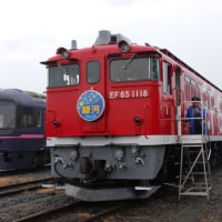 Electric Locomotive#223