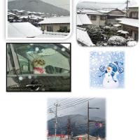 寒い雪の日