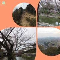 近江八幡の旅