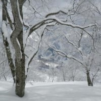スキー合宿in白馬
