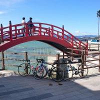 浜名湖一周(74.98キロ走りました。)