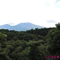 2016年 軽井沢旅行10 *バーモラル軽井沢と風のガーデン2*