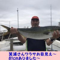 5/25の釣果