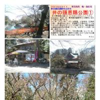 散策 「東京南西部-259」 井の頭恩賜公園①