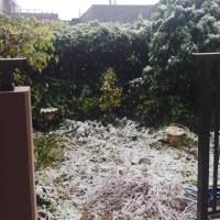 お江戸は雪だよ^_^;寒いわけだ。