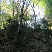 中世城跡探索2ケ所
