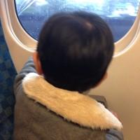 孫と列車のチョビ旅