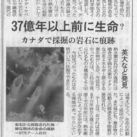 物質から人間への進化を富山大学(電気学会)で発表する 世界で一つの進化論