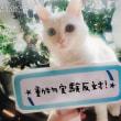 【ケアについて】★赤ちゃんのスキンケア★