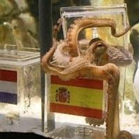 ワールドカップ決勝プレビュー オランダ対スペイン
