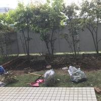 お庭リニューアル