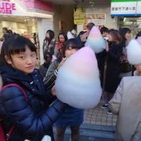 ガッキー太郎の東京ガイド 15