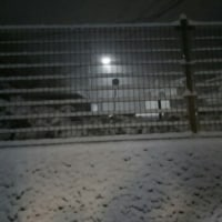 またもや雪が・・・
