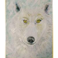 ka zoo(狼)