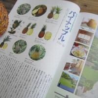 雑誌「モモト」にパインアップルの写真を提供しました。