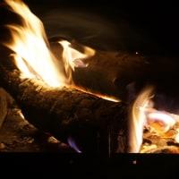 焚き火(ヨシ)